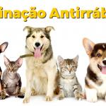 Campanha de Vacinação Antirrábica 2018